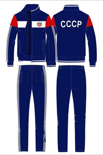 Утепленный спортивный костюм мужской SKM-12M-RR-1194 (синий)
