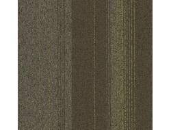 tessera  create space 2  2805 olivaceous