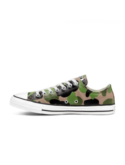 Кеды Converse Chuck Taylor All Star Archival Camo низкие мульти