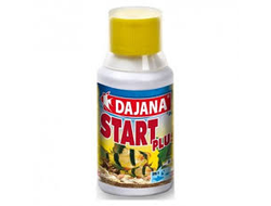 Dajana Start Plus 100 ml