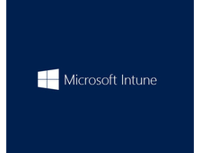 Microsoft Intune OPEN Add-On Shared Server  SNGL Subscription VL OLP NL Annual Academic Faculty Qual