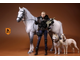 Серый конь - Коллекционная фигурка 1/6 Scale German Hanoverian Warmblood Horse Statue - Real Animal Series (No.17) - Mr.Z